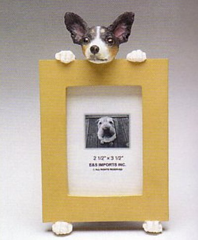 "Rat Terrier - Dog Photo Frame 2 1/2"" x 3 1/2"""
